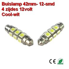 2x Buislamp 42mm 12 SMD rond Cool-wit (245 lumen) 12v