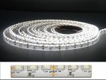 5Meter-LEDstrip-sidevieuw--600x335smd--IP65-Cool-wit